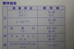 Img_6217_convert_20101215161953